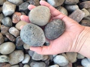 River rock: 4 sizes  Pea stone  Buy online or offline in